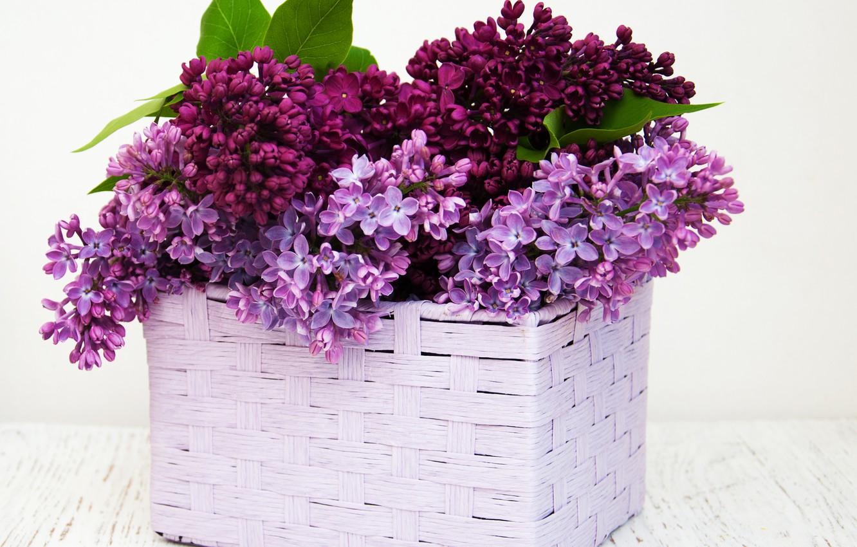 Photo wallpaper bouquet, basket, lilac, lilac