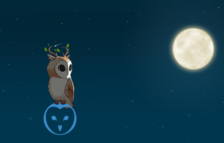 Photo wallpaper Night, The moon, The barn owl, Olenevoda barn owl