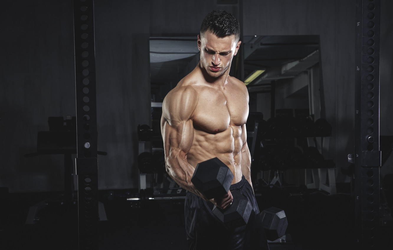 Photo wallpaper pose, muscle, muscle, training, biceps, gym, training, weight, Gym, dumbbells, biceps, bodybuilder, gym