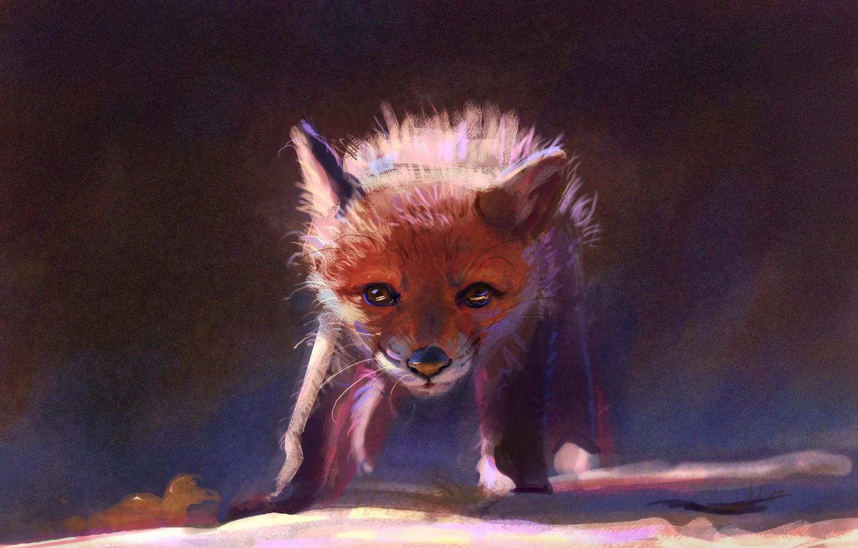 Photo wallpaper nature, Fox, ruffled, by Meorow