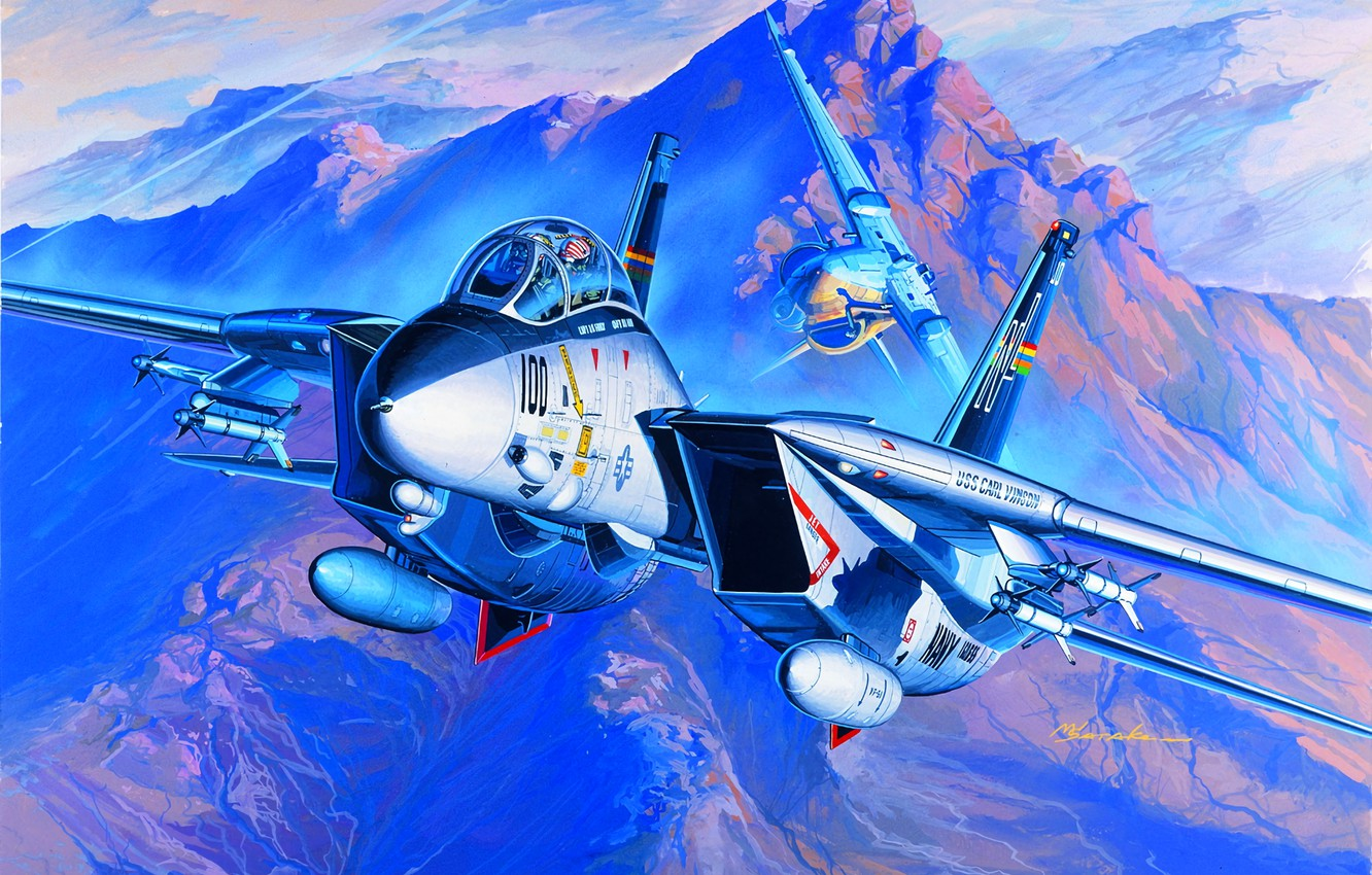 Photo wallpaper USA, Grumman, multi-role fighter, The Fourth Generation, US Navy, F-14 Tomcat, Deck-based aircraft