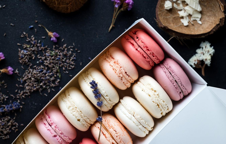 Photo wallpaper colorful, box, flowers, lavender, lavender, french, macaron, macaroon