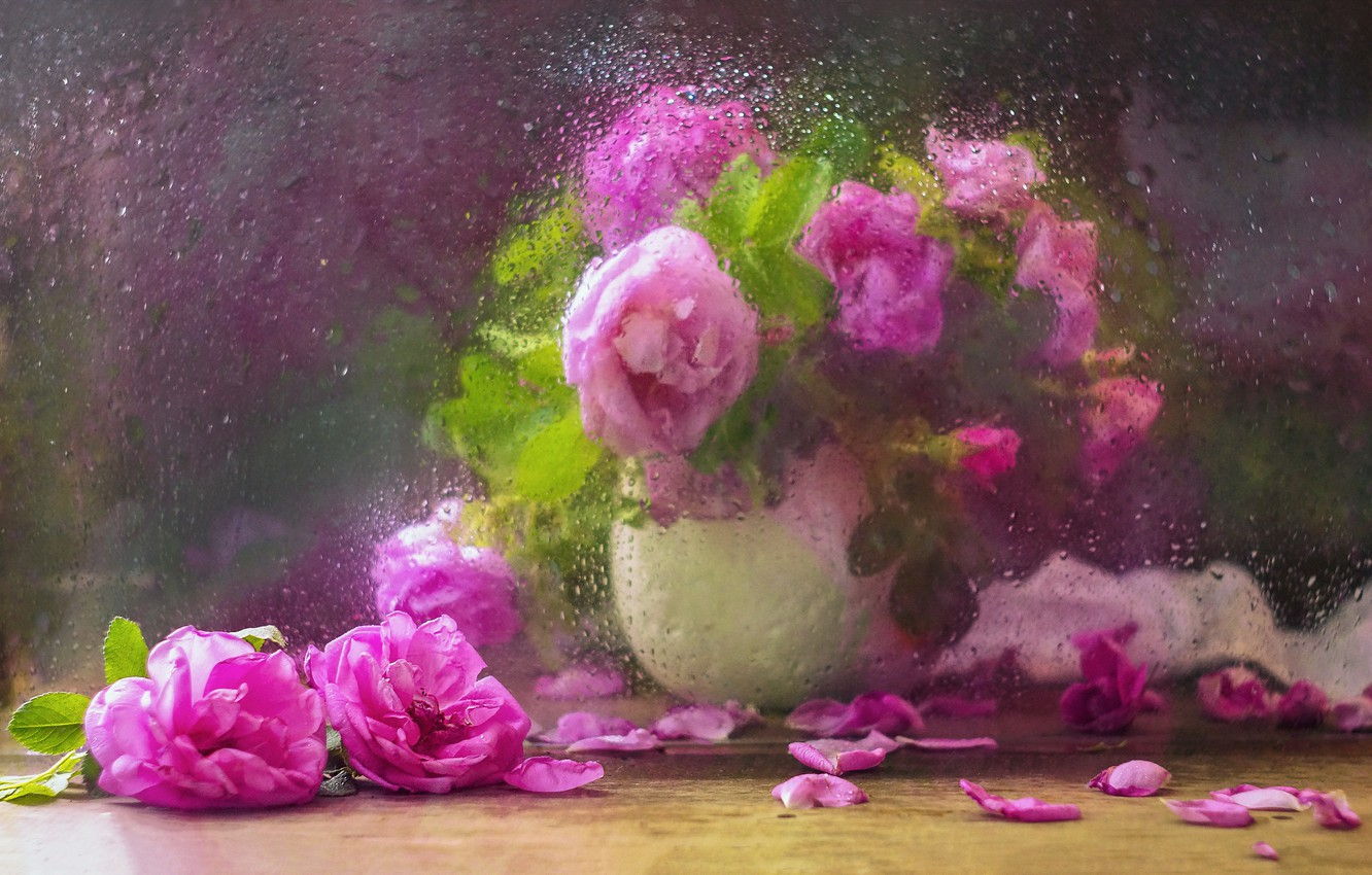 Photo wallpaper glass, water, drops, flowers, branches, petals, briar, vase