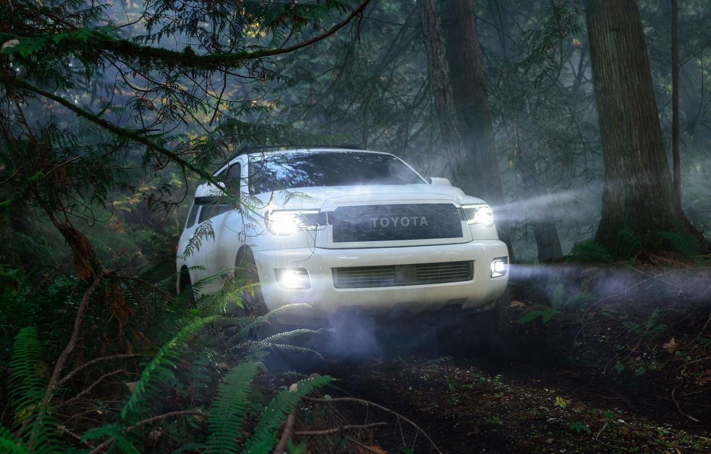 Photo wallpaper machine, forest, light, trees, lights, optics, Toyota, Sequoia, full-size SUV, TRD Pro