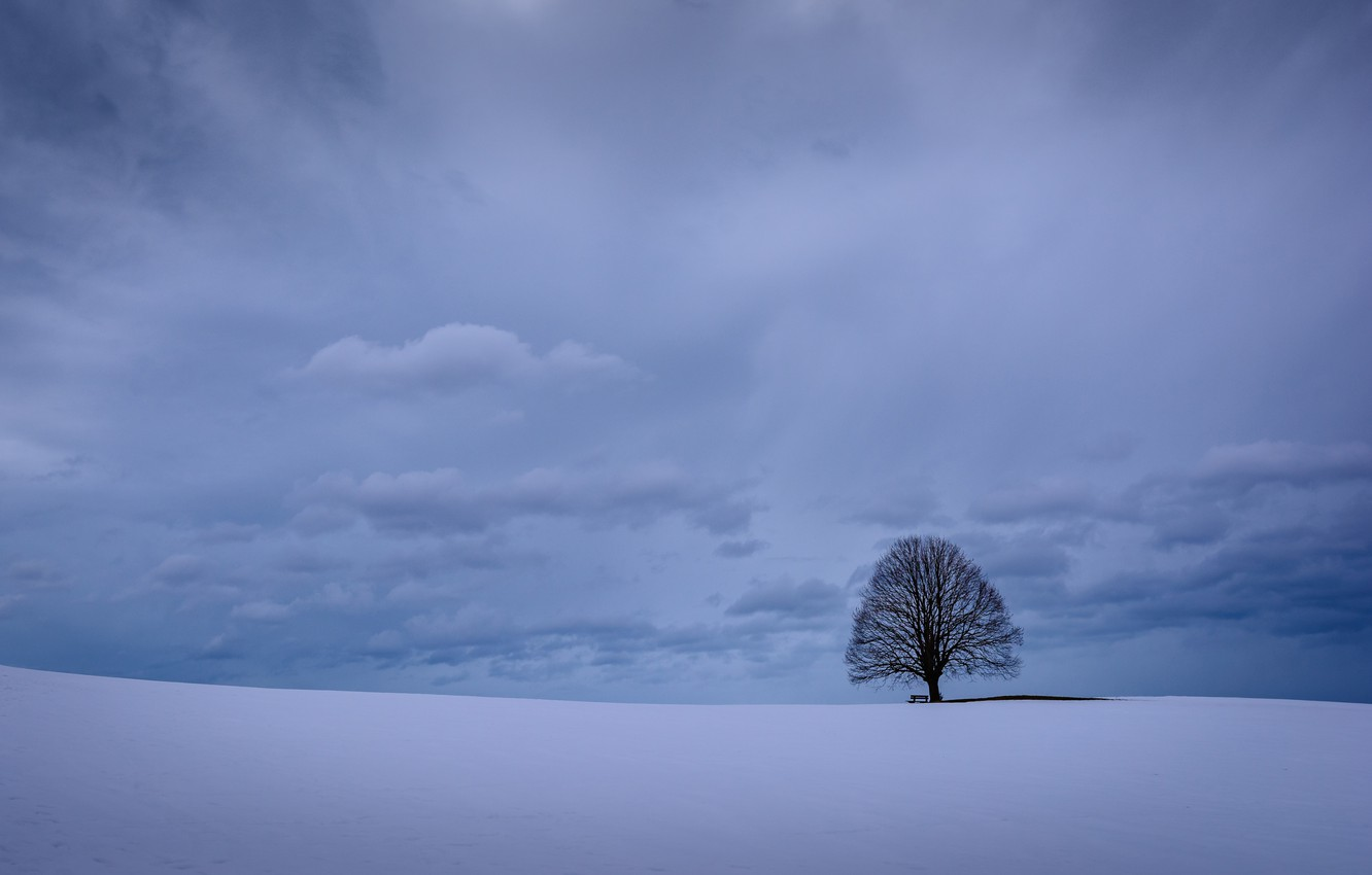 Photo wallpaper winter, the sky, clouds, snow, tree, Germany, Bayern