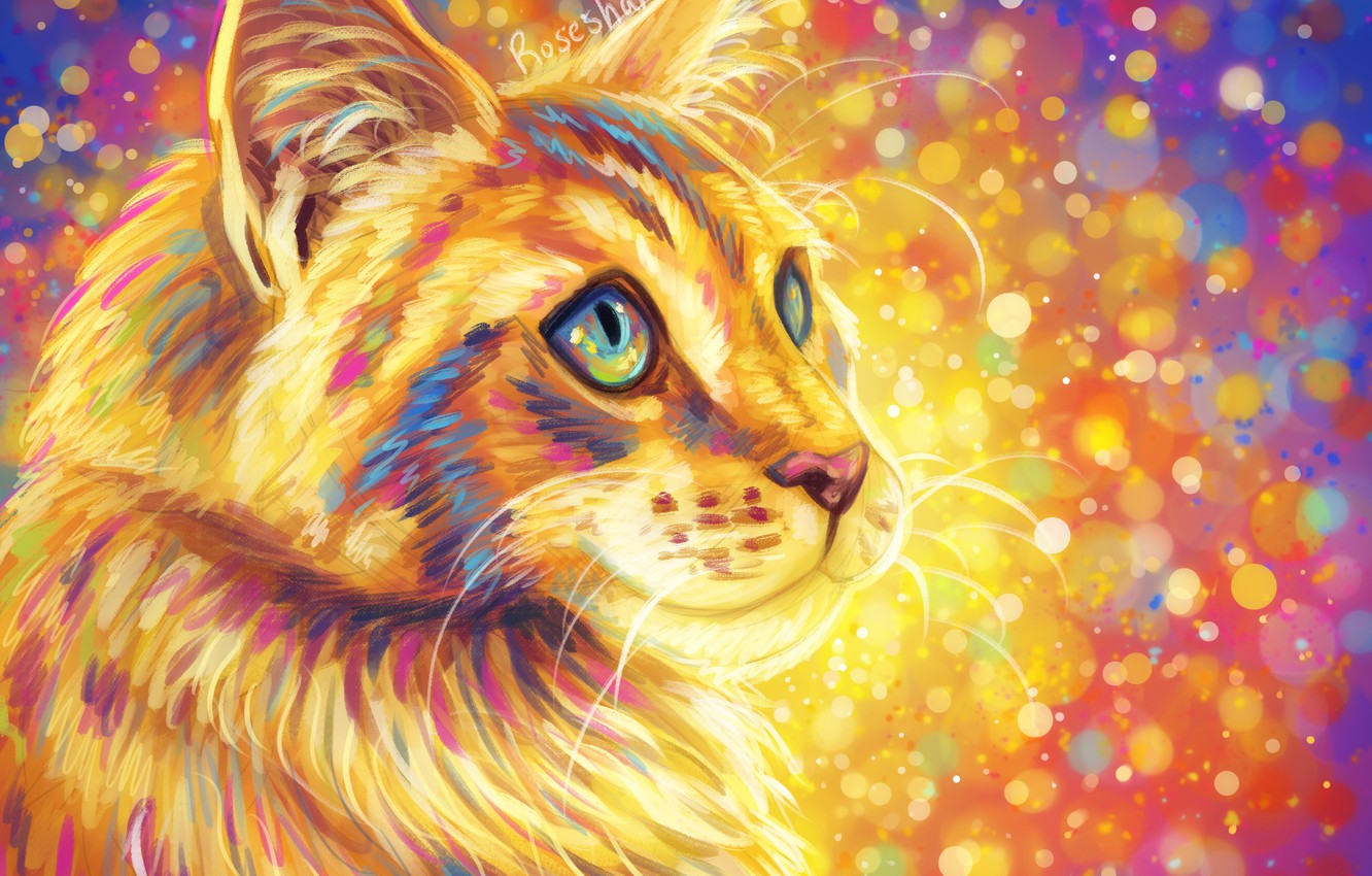 Photo wallpaper cat, fluffy, colorful background