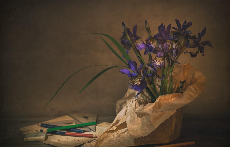 Photo wallpaper pencils, still life, irises
