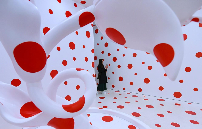 Photo wallpaper installation, Yayoi Kusama, With love to tulips