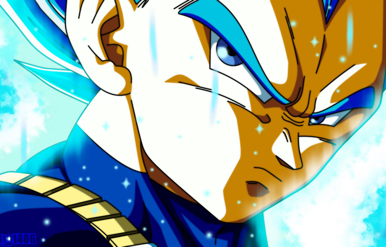 Wallpaper Vegeta Dragon Ball Super Saiyan Blue Dragon Ball