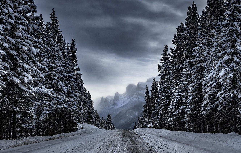 Photo wallpaper winter, road, forest, trees, mountains, Timothy Poulton