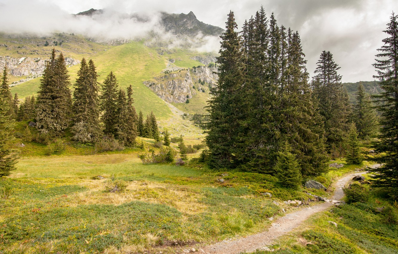 Photo wallpaper forest, clouds, mountains, fog, stones, rocks, the slopes, ate, path