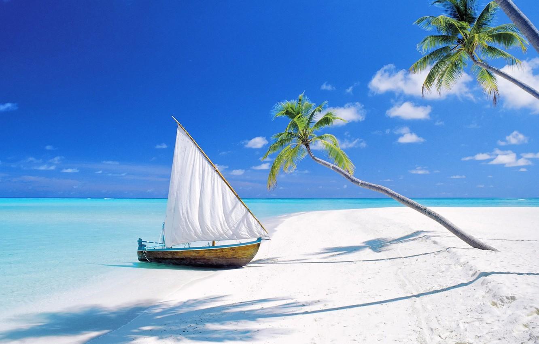 Photo wallpaper beach, palm trees, the ocean, boat, island, sail, The Maldives