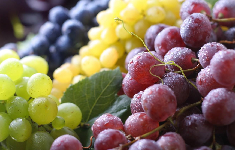 Photo wallpaper macro, berries, grapes