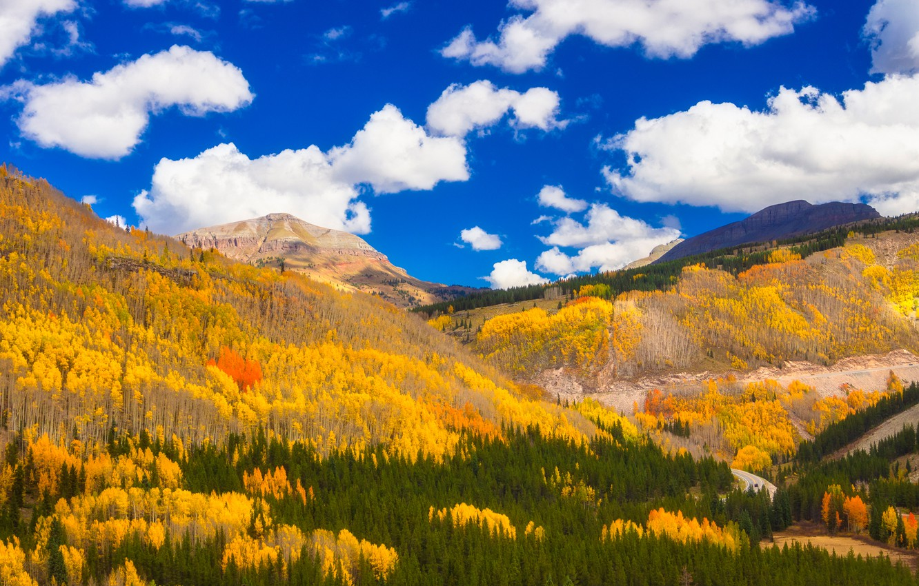 Photo wallpaper autumn, forest, clouds, mountains, Colorado