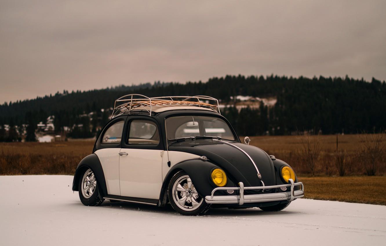 Photo wallpaper Volkswagen, Beetle, Volkswagen Beetle, bug