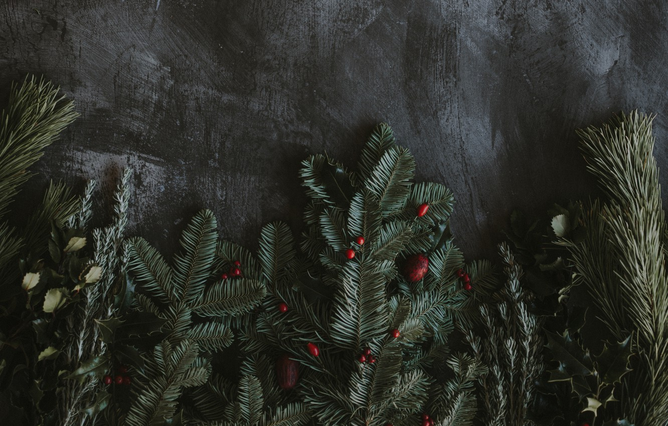 Photo wallpaper branches, berries, holiday, spruce, New year
