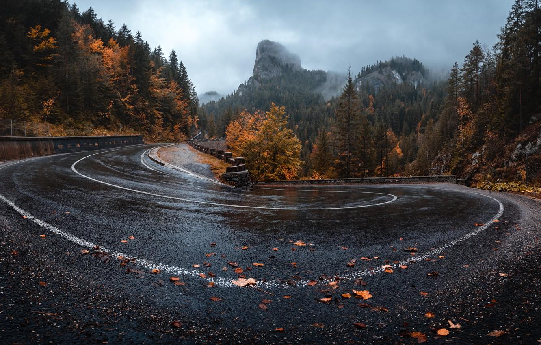 Photo wallpaper road, autumn, nature