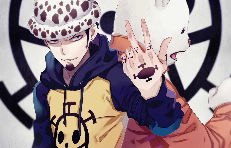 Photo wallpaper hat, pirate, guy, One Piece, tutochki
