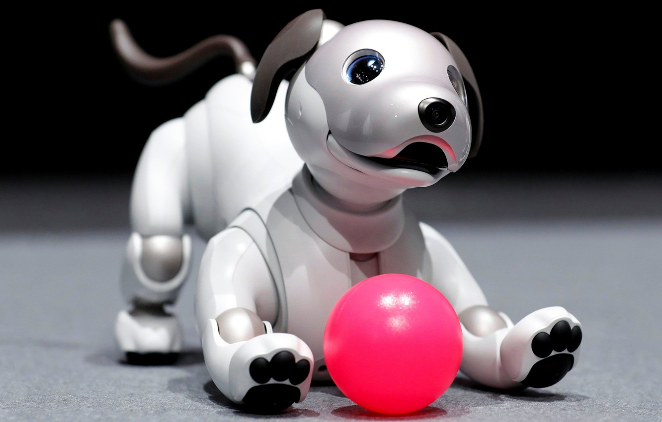 Photo wallpaper look, face, pose, the dark background, pink, toy, the game, the ball, mechanism, robot, dog, …