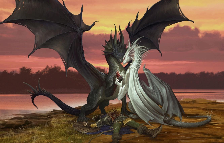 Wallpaper love, fantasy, dragon, heart