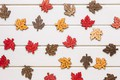 Picture autumn, leaves, background, tree, colorful, wood, background, autumn, leaves, maple