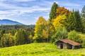 Picture Nature, Trees, Forest, Landscape, Hut