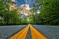 Picture road, summer, asphalt