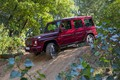 Picture forest, Mercedes-Benz, SUV, G500, G-Class, 2015, G 500, V8 Biturbo