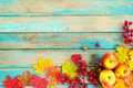 Picture autumn, leaves, berries, background, tree, apples, colorful, nuts, vintage, wood, background, autumn, leaves, maple