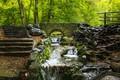Picture Nature, Bridge, Trees, River, Forest, Stones, Stream, Moss